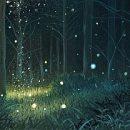 Колдовские травы — Магическая трава