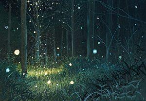 Магические травы