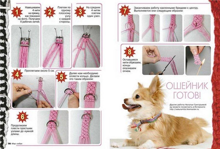 Ошейник для собаки своими руками